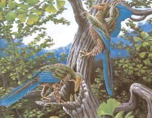 archeopterx