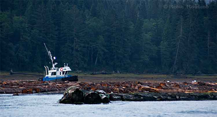 Log booming at Clio Bay