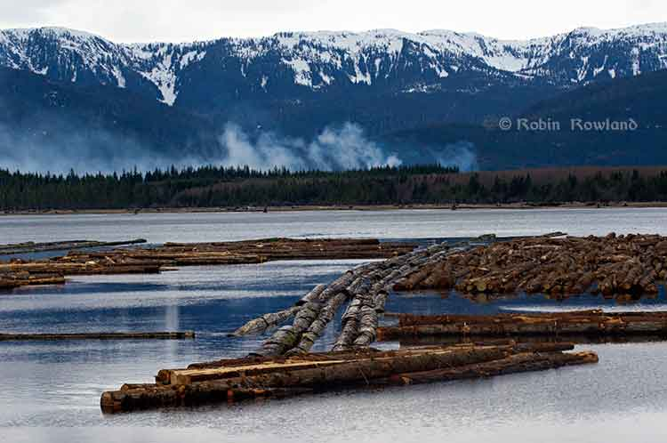Log boom at Minette Bay