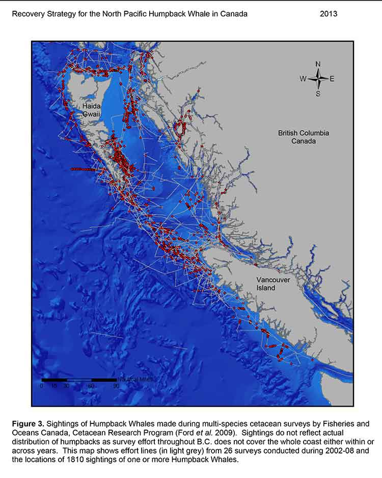 DFO map of humpback habitat