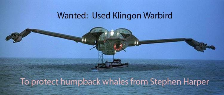 Wanted Used Klingon warbird