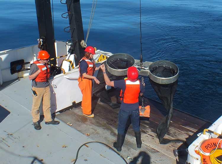 NOAA expediton