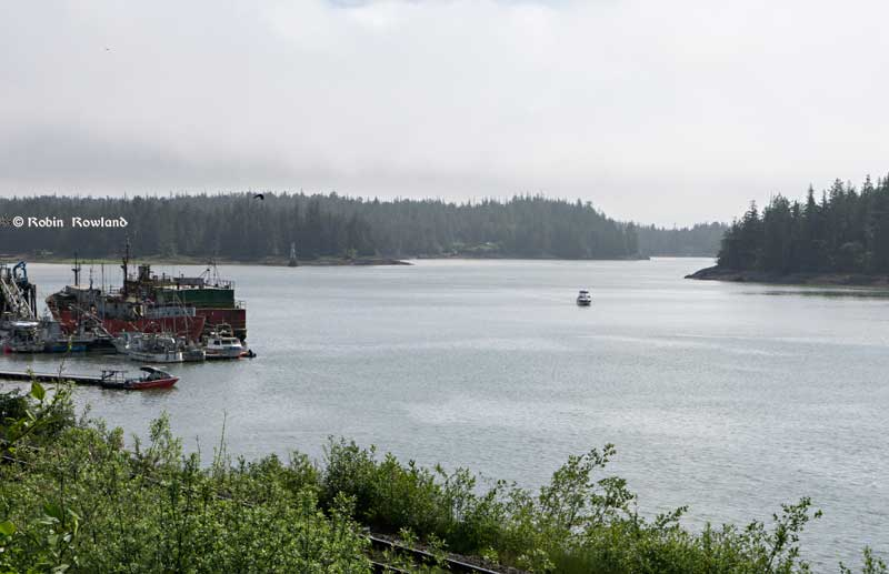 Lelu Island, the flat area in the left of the image, across from the harbour at Port Edward is the potential site of the Petronas  Pacific Northwest LNG project.  (Robin Rowland/Northwest Coast Energy News)