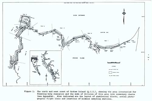523-haidaqwaiikelpmap.jpg